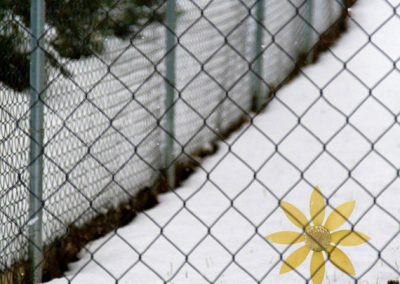 windmill_snow_fence